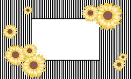 Vektorillustrations-Sonnenblumenrahmen Stockfoto