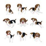 Vektorillustrationuppsättning av den gulliga och roliga beaglehunden, livliga handlingar, spela som hoppar hundkapplöpning i plan royaltyfri illustrationer