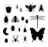 Vektorillustrationuppsättning av kryp, samling av olika krypkonturer, fluga, bi, fästingar och fel, spindel på vektor illustrationer