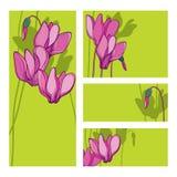 Vektorinbjudankort med buketten av rosa cyklamen eller den alpina violetta gruppen, knoppen och stammen på den gröna bakgrunden vektor illustrationer