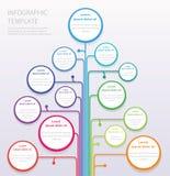 VektorInfographic träd Fotografering för Bildbyråer