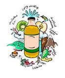 Vektorklotter som dricker flaskan med naturliga ingredienser Royaltyfri Bild