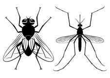 Vektorkonturer av en fluga och en mygga vektor illustrationer