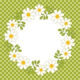Vektorkortmall med en blom- krans på polkan Dot Background Vektorsommarkrans med tusenskönan Fotografering för Bildbyråer