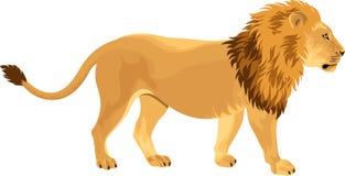 Vektorlöwe - Panthera Löwe Stockbild