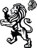 Zügelloses Maskottchen des Löwes lizenzfreie abbildung