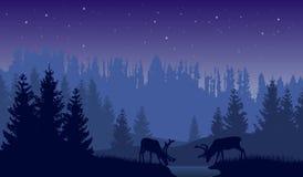 Vektorlandskap av två hjortar i en skog på natten med mörker - blå bakgrund och himmel med stjärnor Royaltyfri Bild