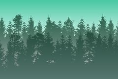 Vektorlandskap med den i lager dimmiga barrskogen för gräsplan Royaltyfri Foto