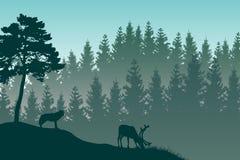 Vektorlandskapet med detaljerad gräsplan varvade den dimmiga skogen och a Royaltyfri Bild