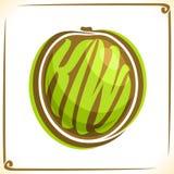 Vektorlogo för Kiwi Fruit Arkivbilder