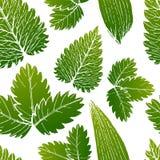 Vektormålning av sömlös modellbakgrund för grönt gräs med den drog handen royaltyfri illustrationer