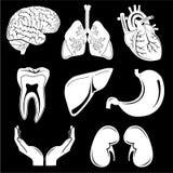 Vektormedizinische Ikonen Stockbild