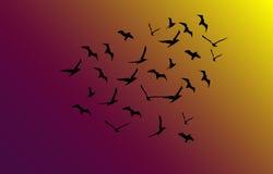 Vektormenge von Fliegenvögeln in Richtung zum hellen Sonnenschein Lizenzfreie Stockbilder