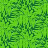 Vektormodell med sidor av tropiska växter vektor illustrationer
