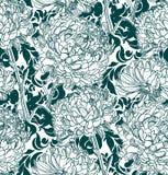 Vektormodellväxten inristar färgpulverchrythantemum skissar vektor illustrationer