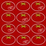 Vektormuster der Tomate Hintergrund Lizenzfreies Stockfoto
