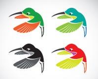 Vektorn avbildar av en hummingbird Arkivbilder