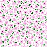 Vektorn blommar sömlöst smattrande bakgrundsbanret blommar datalistor little rosa spiral vektor illustrationer