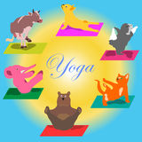Vektorn hand-målade yogaställingar med tecknad filmdjur i olikt poserar för kroppomsorg och fot i lotusblommahälsan och kondition Royaltyfri Foto