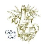 Vektorn skissar affischen av oliv och olivolja stock illustrationer