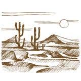 Vektorn skissar det Amerika landskapet med kaktuns Arkivfoton