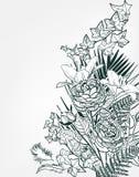 Vektorn skissar monokrom för ram för blommabakgrundskort stock illustrationer