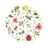 Vektorn ställde in av lösa blommor, biet, humlan, sländan, nyckelpigan, malen, fjärilen som inramades i cirkel royaltyfri illustrationer