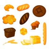 Vektorn ställde in av olika sorter av bröd Tecknad filmstil royaltyfri foto