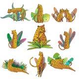 Vektorn ställde in av utdragna leoparder för hand med aktuella sidor Stora lösa katter Linje konst med den färgrika påfyllningen  royaltyfri illustrationer