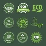 Eco logo Royaltyfri Fotografi