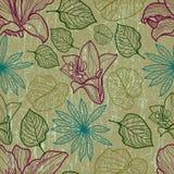 Vektornahtloses Blumenmuster mit Herbarium Stockfoto