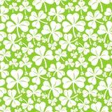 Vektornahtloses Muster mit Kleeblatt Stockfotos