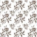 Vektornahtloses Muster mit Rosen stock abbildung