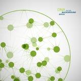 VektorNetwork Connection und DNA eps10 Stockfotografie