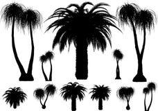 Vektorpalmen und -bäume stock abbildung