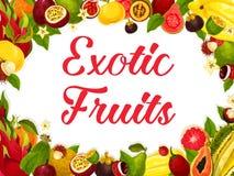 Vektorplakat der tropischen exotischen Fruchternte Stockfotos