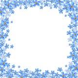 Vektorrahmen mit blauen Vergissmeinnichtblumen Stockbild