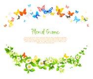 Vektorrahmen mit schönen Schmetterlingen und Gänseblümchen Stockfotos