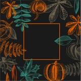 Vektorrahmen mit von Hand gezeichnetem Herbstlaub und Kürbisen Lizenzfreies Stockfoto