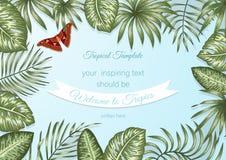 Vektorrahmenschablone mit tropischen Blättern und Atlasspinner auf blauem Hintergrund lizenzfreie abbildung