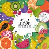 Vektorram med olika tropiska exotiska frukter och brries i plan enkel stil stock illustrationer