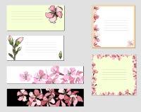 Vektorramar med rosa blommor samling av olika blom- pappers- etiketter för annonser royaltyfri illustrationer