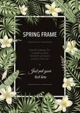 Vektorrammall med tropiska sidor och blommor p? svart bakgrund stock illustrationer