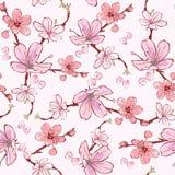 Vektorrosa färger Cherry Sakura Flowers Seamless Pattern Royaltyfri Bild