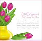 Vektorrosafarbene Tulpen mit Tropfen lizenzfreie abbildung