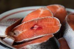 Vektorrote Fische getrennt auf Weiß Stockbilder