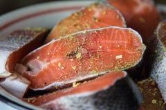 Vektorrote Fische getrennt auf Weiß Stockfotos