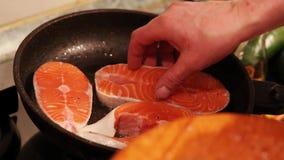 Vektorrote Fische getrennt auf Weiß stock footage