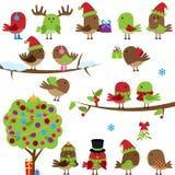 Vektorsamling av jul och vinterfåglar Arkivfoto