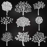 Vektorsamling av konturer för svart tavlastilträd Royaltyfria Foton